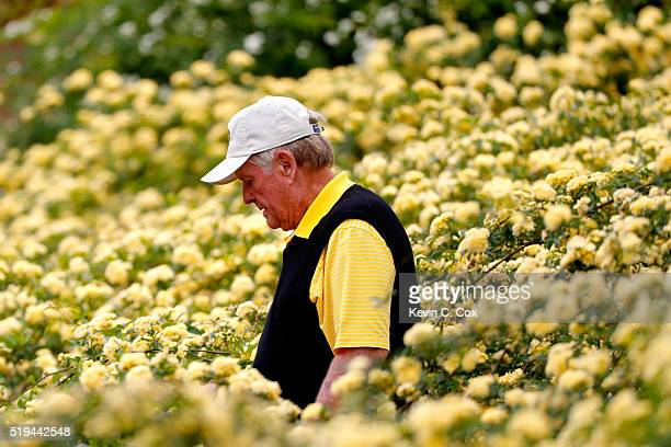 Jack Nicklaus walks during the Par 3 Contest prior to the start of the 2016 Masters Tournament at Augusta National Golf Club on April 6 2016 in...