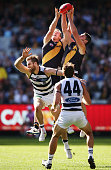 Jack Riewoldt of the Tigers and Chris Newman competes for the ball over Jared Rivers of the Cats during the round five AFL match between the Richmond...