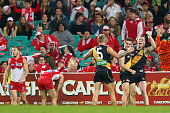 Jack Riewoldt of the Tigers and team mates celebrate winning the round 13 AFL match between the Sydney Swans and the Richmond Tigers at SCG on June...