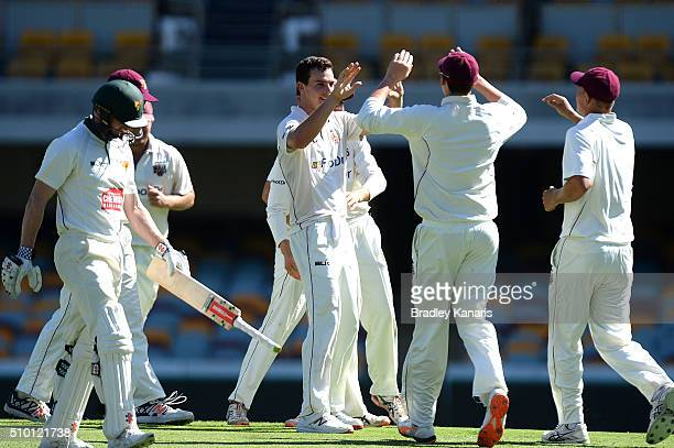 Jack Wildermuth of Queensland celebrates with team mates after taking the wicket of George Bailey of Tasmania during day one of the Sheffield Shield...
