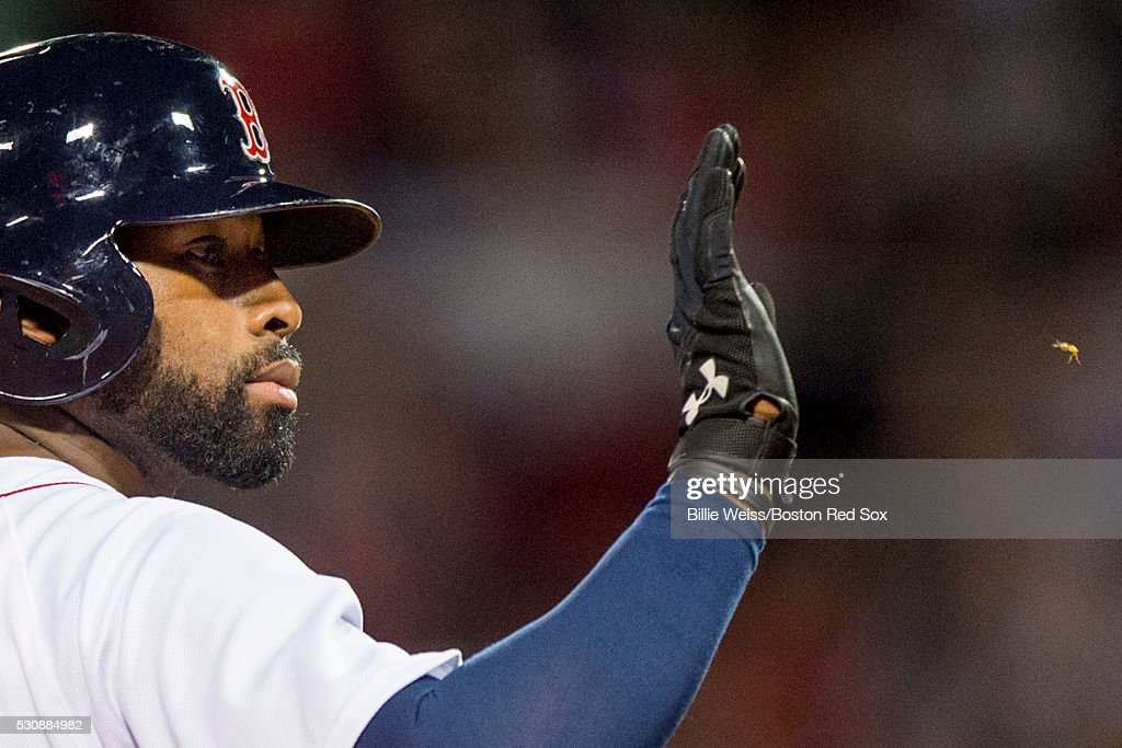 Jackie Bradley Jr. #25 of the Boston Red Sox swats away a bug during the fifth inning of a game against the Oakland Athletics on May 11, 2016 at Fenway Park in Boston, Massachusetts.