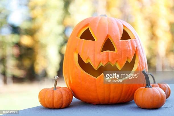 Jack-O-Lantern and three small pumpkins