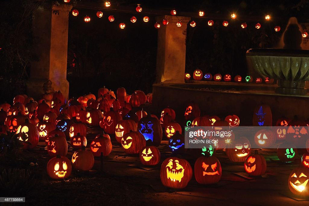 Jacko'lanterns are displayed at the 'Rise of the Jack OLanterns' exhibition featuring more than 5000 handcarved illuminated pumpkins created by...