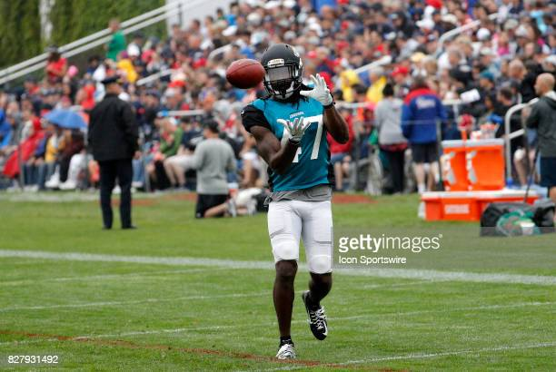 Jacksonville Jaguars safety Jarrod Wilson eyes the reception during a joint New England Patriots and Jacksonville Jaguars training camp on August 8...