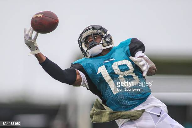 Jacksonville Jaguars wide receiver Larry Pinkard tries to make a catch during the Jaguars training camp on July 29 2017 at Florida Blue Health and...