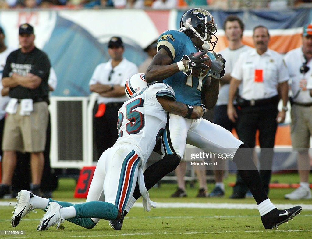 Jacksonville Jaguars wide receiver Reggie Williams makes a c