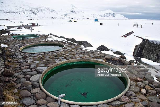 Jacuzzis at Hoffell of Iceland