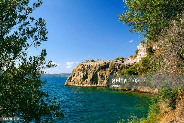 Jagged coast and blue sky in summer on Bisentina Island one of the two islands of the Bolsena Lake a crater lake of volcanic origin