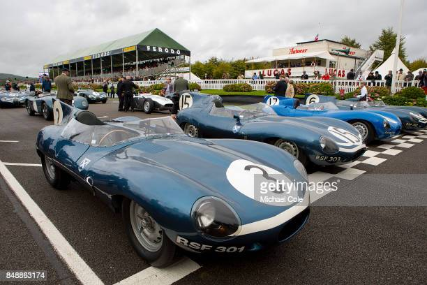 The Ecurie Ecosse Parade on the grid at Goodwood on September 8th 2017 in Chichester England CHICHESTER ENGLAND SEPTEMBER 08 Jaguar Dtypes lineup on...