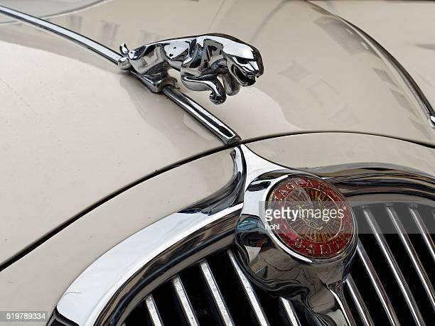 Jaguar Jahrgang Klassische Car-Symbol