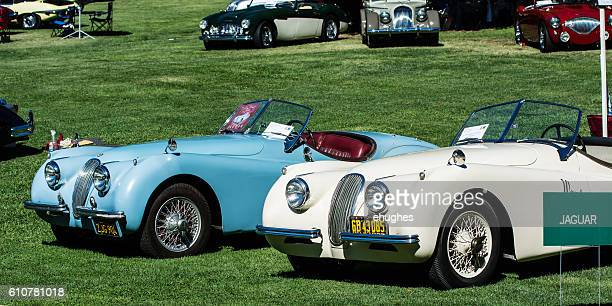 Jaguar XK120 Roadsters