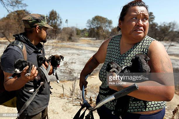 MONDAY AUGUST 17 2015 MONTEBELLO CA Jaime Reyes left surveys the damage a fire caused while his wife Rachel Rodriguez holds three of the five pups...
