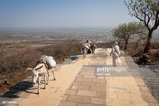 Jain nun walking down on Shatrunjaya hill Gujarat India Palitana is the worlds only mountain that has more than 900 temples The Palitana temples and...