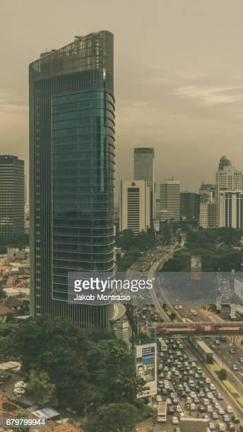 Jakarta Jungle