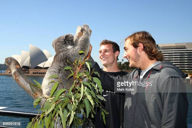 Jake Bailey and Jet Toner of the Stanford Cardinal pose with Tabbi the koala during the 2017 US College Football Sydney Cup Launch at the Sydney...
