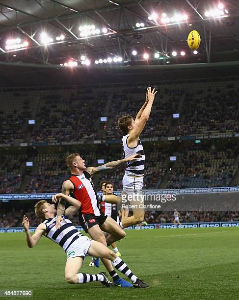 Jake Kolodjashnij of the Cats leaps for the ball during the round 21 AFL match between the St Kilda Saints and the Geelong Cats at Etihad Stadium on...