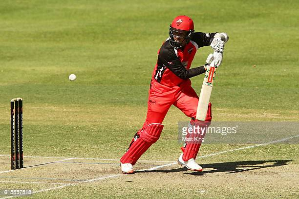 Jake Lehmann of the Redbacks bats during the Matador BBQs One Day Cup match between South Australia and Tasmania at Hurstville Oval on October 19...