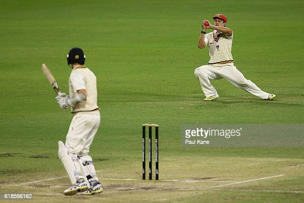 Jake Lehmann of the Redbacks takes a catch to dismiss Jason Behrendorff of the Warriors during day three of the Sheffield Shield match between...