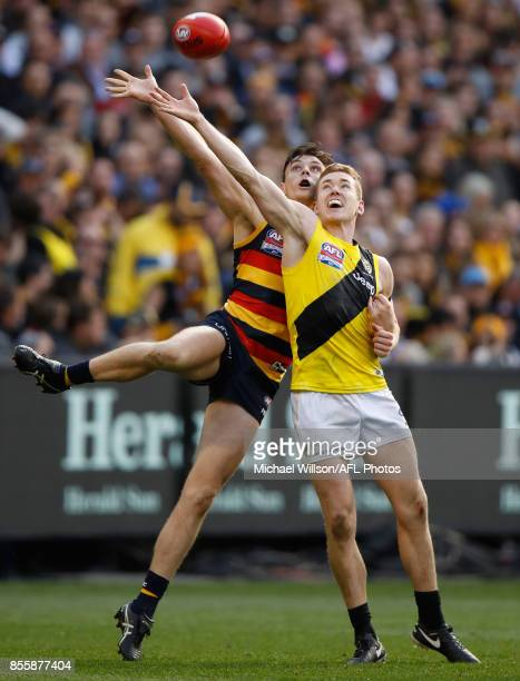 Jake Lever of the Crows and Jacob Townsend of the Tigers in action during the 2017 Toyota AFL Grand Final match between the Adelaide Crows and the...