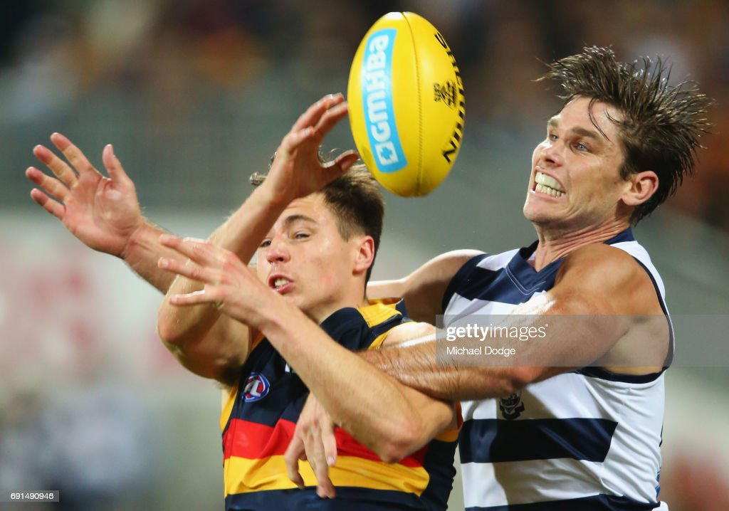 Jake Lever of the Crows (L) and Tom Hawkins of the Cats compete for the ball during the round 11 AFL match between the Geelong Cats and the Adelaide Crows at Simonds Stadium on June 2, 2017 in Geelong, Australia.