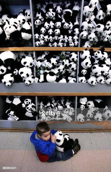 Jake Winkler of Centreville Virginia holds a stuffed panda in front of a plush panda display at Smithsonian National Zoological Park's store December...