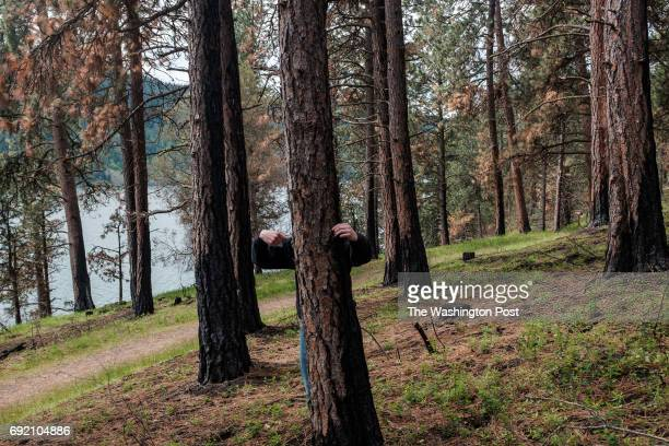 Jakob Namson with his class from Lake City High School measure a tree at Farragut State Park in Idaho to learn about the effects that trees have on...