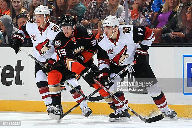 Jakob Silfverberg of the Anaheim Ducks battles for position against Radim Vrbata and Christian Dvorak of the Arizona Coyotes on November 4 2016 at...