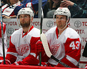 Jakub Kindl and Darren Helm of the Detroit Red Wings look on from the bench prior to puck drop against the Winnipeg Jets at the MTS Centre on...