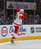 Jakub Kindl of the Detroit Red Wings celebrates his game winning goal at 217 of overtime against the Toronto Maple Leafs at the Air Canada Centre on...