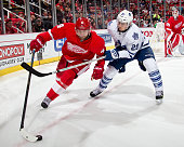 Jakub Kindl of the Detroit Red Wings protects the puck from David Booth of the Toronto Maple Leafs during a NHL game on December 10 2014 at Joe Louis...