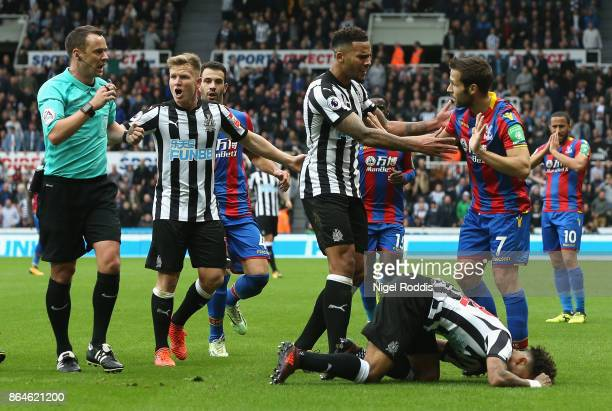 Jamaal Lascelles of Newcastle United confronts Yohan Cabaye of Crystal Palace as Deandre Yedlin of Newcastle United is injured during the Premier...