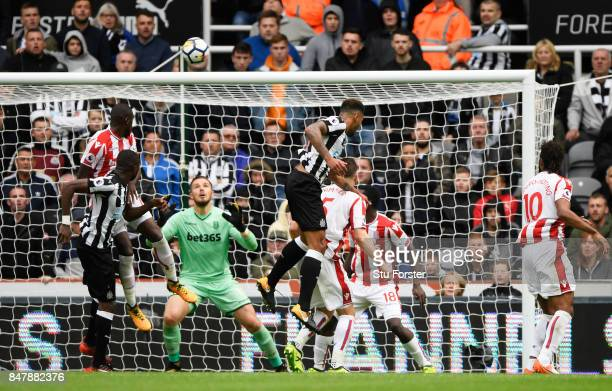 Jamaal Lascelles of Newcastle United scores his sides second goal during the Premier League match between Newcastle United and Stoke City at St James...
