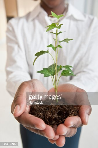 Jamaican businesswoman holding a plant : Stock-Foto
