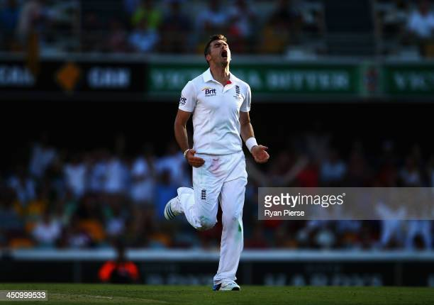 James Anderson of England celebrates after taking the wicket of Peter Siddle of Australia during day one of the First Ashes Test match between...