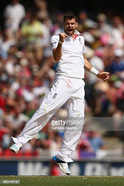 James Anderson of England celebrates dismissing David Warner of Australia during day two of the Fifth Ashes Test match between Australia and England...