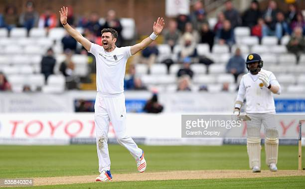 James Anderson of England successfully appeals for the wicket of Rangana Herath of Sri Lanka during day four of the 2nd Investec Test match between...