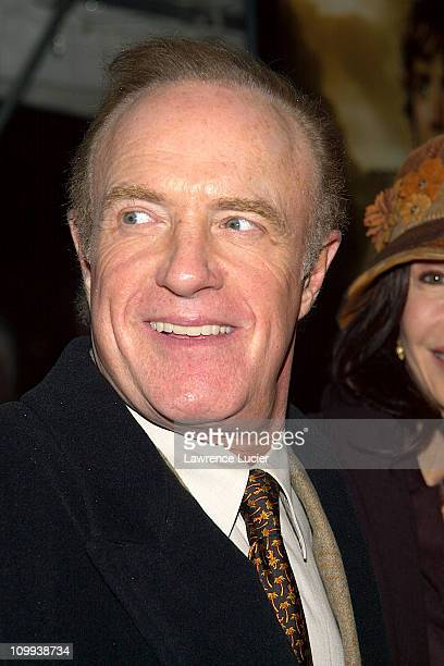 The Two Towers Premiere at Ziegfeld Theatre in New York New York United States