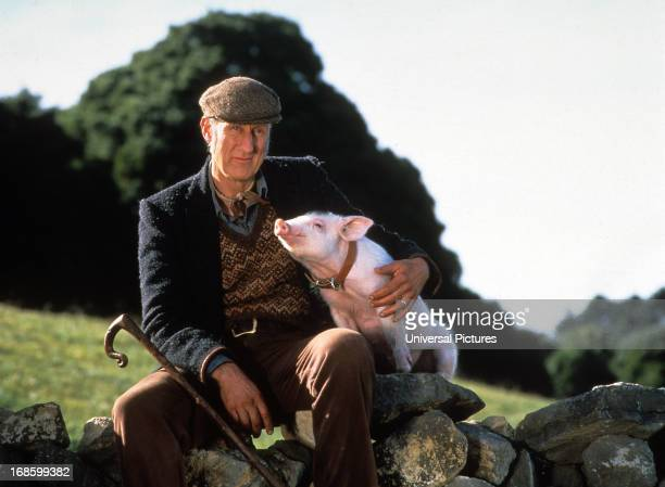 James Cromwell with Babe in a scene from the film 'Babe' 1995