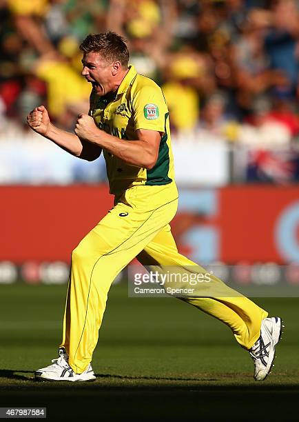James Faulkner of Australia celebrates dismissing Corey Anderson of New Zealand during the 2015 ICC Cricket World Cup final match between Australia...