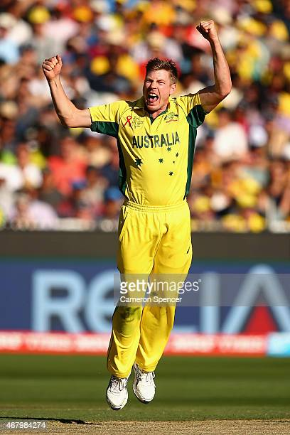 James Faulkner of Australia celebrates dismissing Ross Taylor of New Zealand during the 2015 ICC Cricket World Cup final match between Australia and...