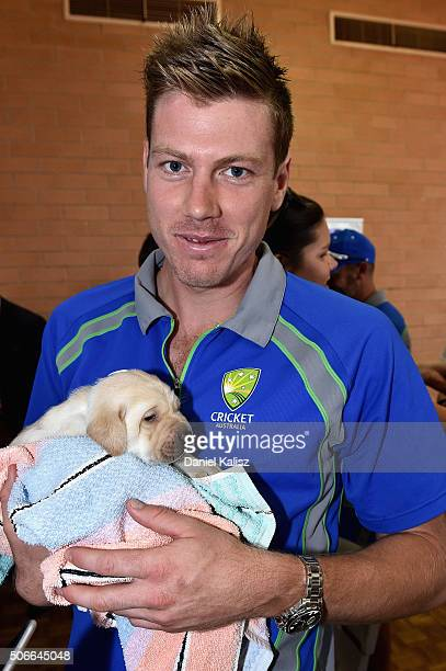 James Faulkner of Australia poses for a photo with a puppy guide dog during a training session at Gilles Field on January 25 2016 in Adelaide...