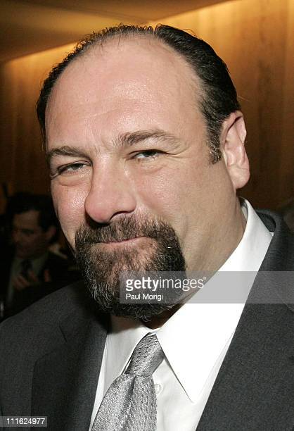 James Gandolfini during HBO Premiers 'Baghdad ER' in Washington DC in Washington DC DC United States