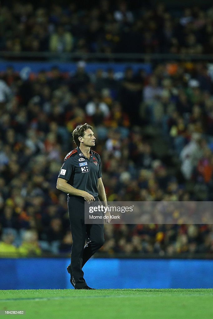 <a gi-track='captionPersonalityLinkClicked' href=/galleries/search?phrase=James+Hird&family=editorial&specificpeople=201975 ng-click='$event.stopPropagation()'>James Hird</a> of the Bombers looks on during the round one AFL match between the Adelaide Crows and the Essendon Bombers at AAMI Stadium on March 22, 2013 in Adelaide, Australia.