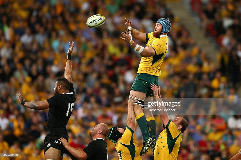 <a gi-track='captionPersonalityLinkClicked' href=/galleries/search?phrase=James+Horwill&family=editorial&specificpeople=637477 ng-click='$event.stopPropagation()'>James Horwill</a> of the Wallabies takes a lineout ball during the Bledisloe Cup match between the Australian Wallabies and the New Zealand All Blacks at Suncorp Stadium on October 18, 2014 in Brisbane, Australia.