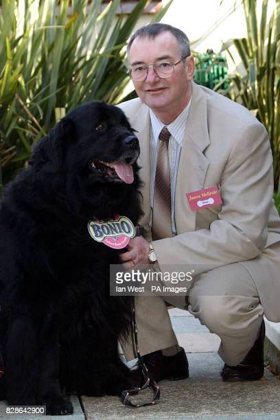 James McBride and his Newfoundland dog Gem at the Golden Bonio Awards at the Roof Gardens Kensington James from Muirkirk East Ayrshire was saved from...