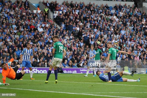 James Morrison of West Bromwich Albion scores a goal to make it 31 during the Premier League match between Brighton and Hove Albion and West Bromwich...