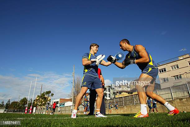 James O'Connor and Quade Cooper box during an Australian Wallabies training session at Coogee Oval on May 28 2012 in Sydney Australia