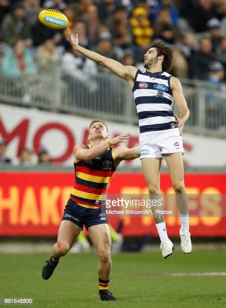 James Parsons of the Cats and Rory Laird of the Crows compete for the ball during the 2017 AFL round 11 match between the Geelong Cats and the...