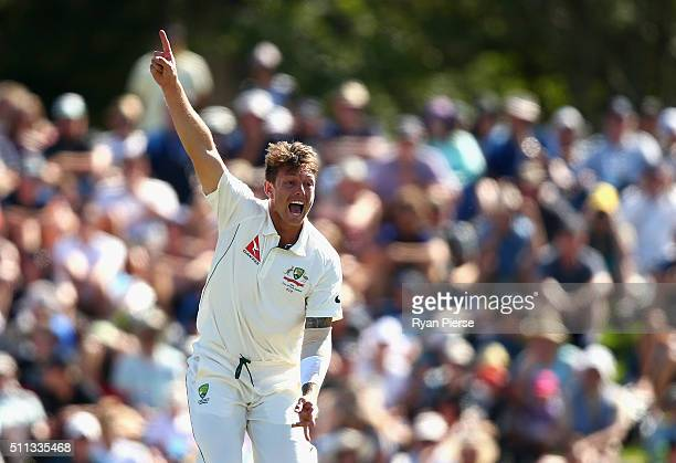 James Pattinson of Australia appeals for a wicket during day one of the Test match between New Zealand and Australia at Hagley Oval on February 20...