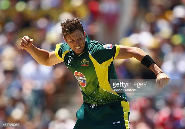 James Pattinson of Australia celebrates after taking the wicket of Gary Ballance of England during game four of the One Day International series...